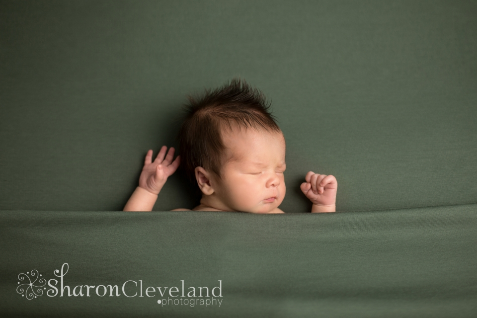 Newborn boy portraits
