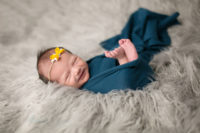 Newborn Photography Special